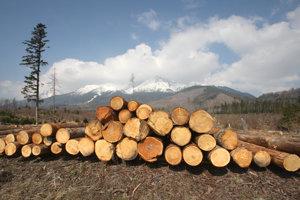 Drevo - veľmi vhodný prírodný materiál na stavbu domov.