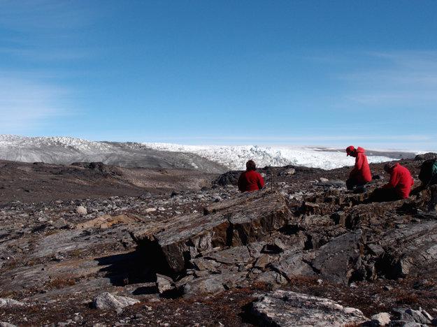 Fosíliu našli v Grónsku.