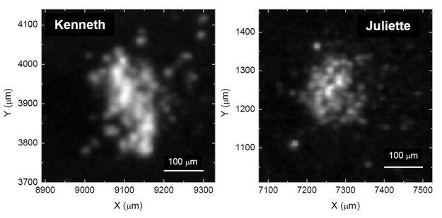 Obrázok dvoch vzoriek prachu, nazvaných Kenneth a Juliette, ktoré obsahujú stopy uhlíka.