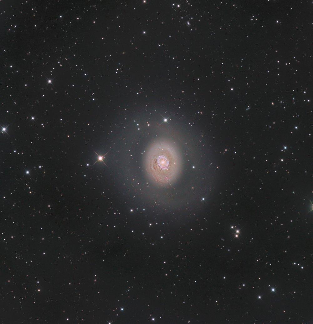 Messier 94: hlbokovesmírna žiara – víťaz kategórie Galaxie.