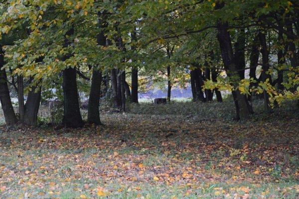 Jesenná rovnodennosť nastane vo štvrtok poobede.