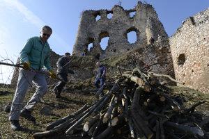 Údržba zrúcaniny. Dobrovoľníci odstraňujú náletové dreviny blízko hradu.