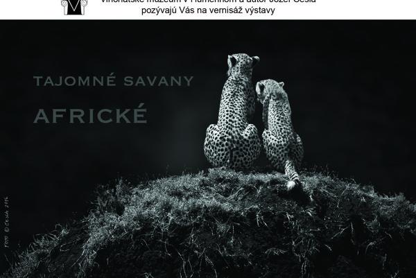 Fotograf Jozef Česla. Predstaví sa vhumenskom kaštieli autorskou výstavou Tajomné savany africké.