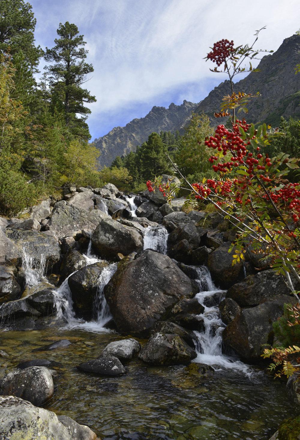 Ľadový potok stekajúci Zlomiskovou dolinou.