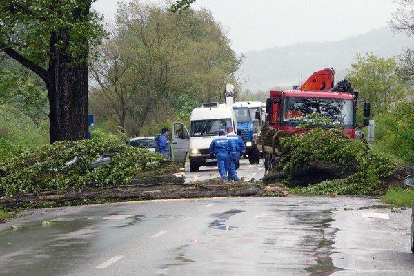 Silný nárazový vietor v máji pováľal v okrese Revúca desiatky stromov.