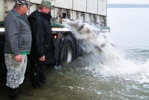 V Oravskej priehrade pribudne viac ako 27 ton kapra.