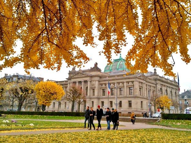 Miesto oddychu. V Štrasburgu dbajú dôsledne o zeleň. Vďaka tomu sú ulice popretkávané parkmi, zelenými plochami a mohutnými stromami. Tak ako na Námestí republiky. Park je ohraničený mestskými kultúrnymi inštitúciami ako divadlo či knižnica. Jesenný kolorit vyhľadávanému parku dodávajú mohutné dreviny.
