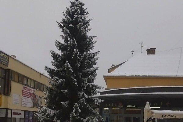 Stromček vo Vrútkach osadili vcentre mesta.