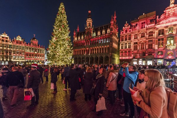 Vianočný stromček na bruselskom námestí Grand Place vyrástol na Slovensku.