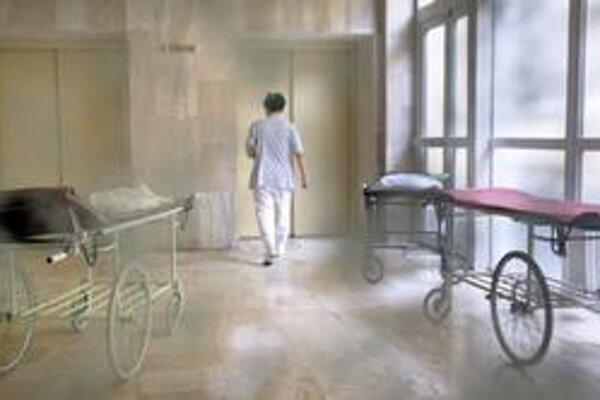 Transformácia nemocníc sa môže stať jednou z tém predvolebnej kampane.