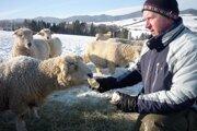 Farmár Tibor Martoník dokrmuje počas extrémne nízkych teplôt svoje Kentky suchými rožkami.