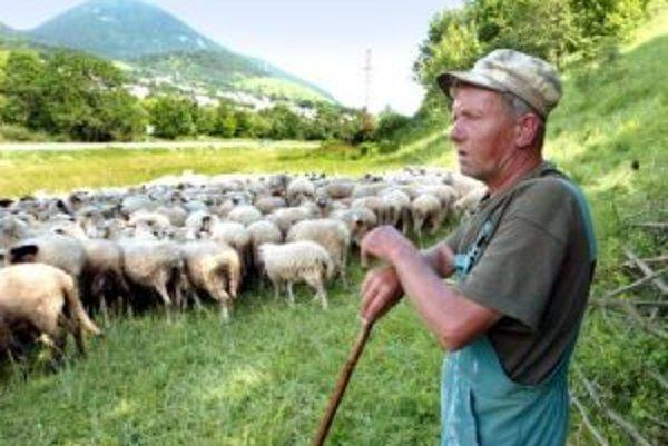 Pastier František Kuracina má väčšie obavy z kliešťov a búrok ako medveďov.