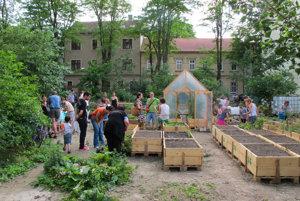 Bývalá záhrada na Sasinkovej ulici.