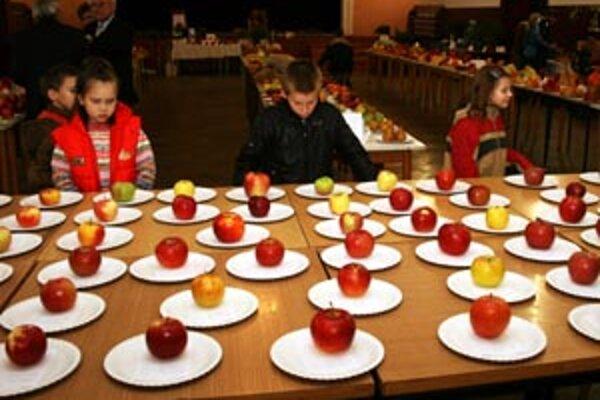 Záhradkári vystavovali svoje ovocie v Novákoch.