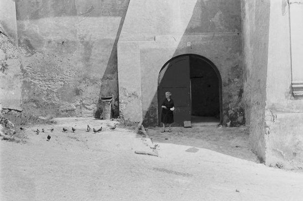 Banskoštiavničanka kŕmi holuby.