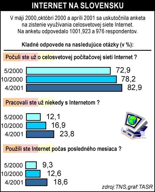 Podľa štatistiky v máji 2000 len 12% Slovákov malo skúsenosť s internetom.
