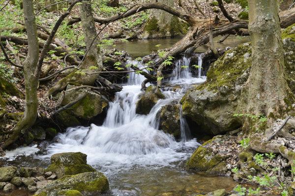 Snímka z potoka Blatnica.
