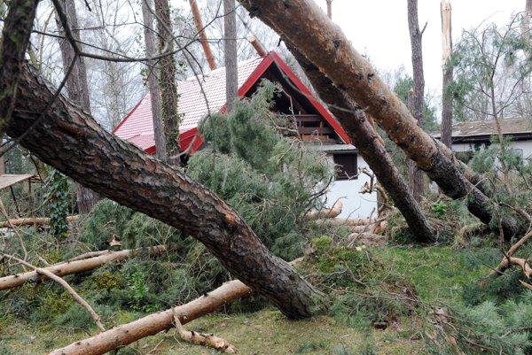 Rýchlosť vetra pri orkáne presahuje 118 kilometrov za hodinu. Strháva strechy domov a vyvracia stromy.