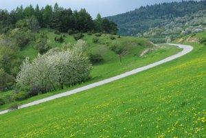 Cesta z Lipoviec do Lačnova, v pozadí Magura.
