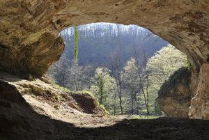 Vedci získali DNA praľudí zo sedimentov, aj keď nenašli žiadne kosti.
