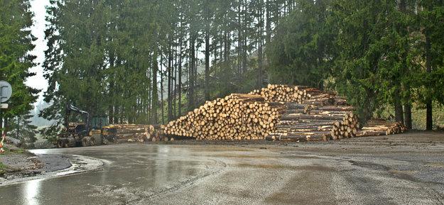 Čerstvo vypílené stromy pri ceste na Záhradkách vDemänovskej doline.
