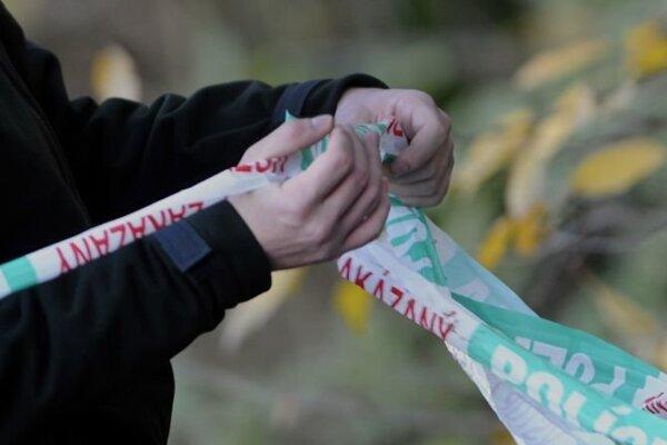 Vyšetrovateľ Krajského riaditeľstva Policajného zboru v Žiline obvinil 18-ročnú Luciu z obzvlášť závažného zločinu vraždy.