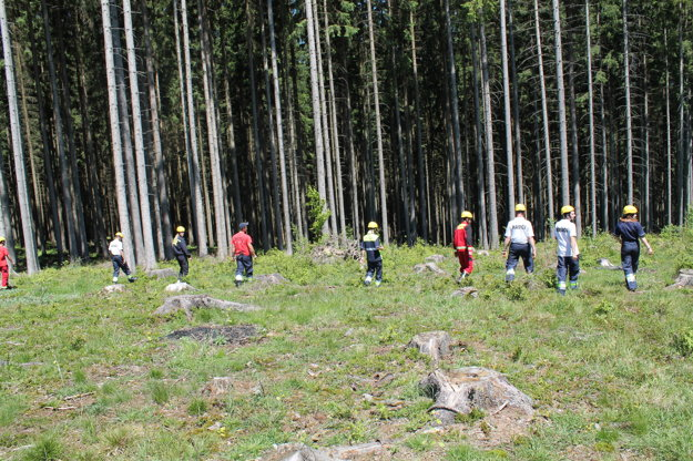 Najskôr do terénu vyrazili psovodi, za nimi už nasledovala vytvorená ľudská rojnica.