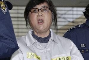 Čche Son-sil podľa súdu spáchala viacero nelegálnych činov.