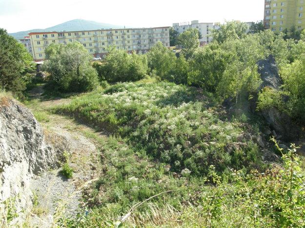 Aktuálny pohľad do bane. Kto do nej vyviezol zeminu zo stavby, ktorú mesto dodnes nevyužilo, zostáva tajné.