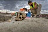 Pri Bratislave odhalili jedno z najväčších archeologických nálezísk