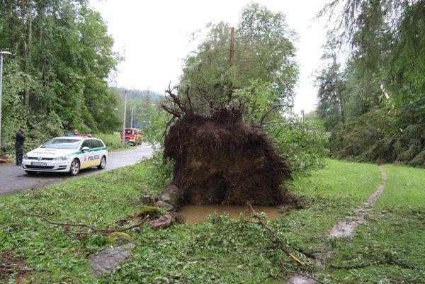Vysoké stromy smršť vyvracala aj s koreňmi.