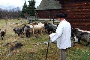 Pribylinou dnes zaznejú pastierske nôty.