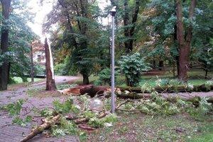 Následky kalamity v parku.