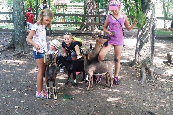 Zoo v Spišskej Novej Vsi sa teší z mláďatiek.