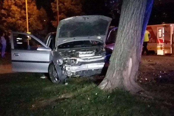 Po náraze. Auto skončilo v strome.