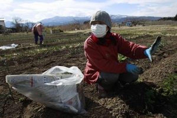 Pestovatelia zeleniny v Japonsku sa obávajú radiácie.