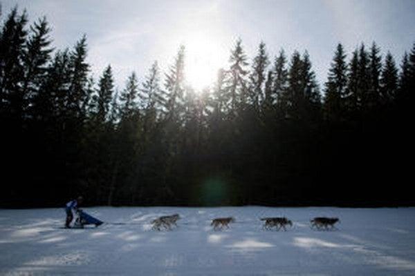 Psie záprahy sa do obce Donovaly nevrátia.
