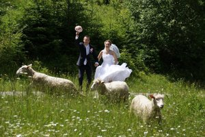 Stále viac snúbencov si vyberá netradičné miesta na sobáš.