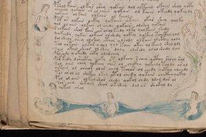 Niektoré ilustrácie nahých žien ozdobujú okraje stránok vo Voynichovom rukopise.