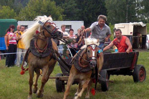 Kone ukázali, že si hravo poradia s vozom aj s ťažkou kladou.