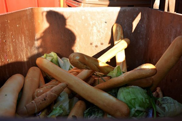 Jedlo v kontajneroch - ilustračná fotografia.