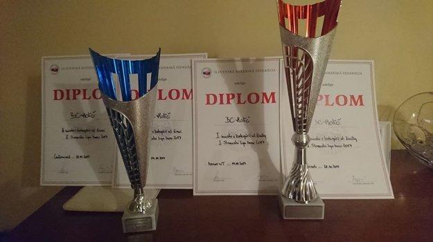 Boxeristi získali niekoľko diplomov a ocenení.