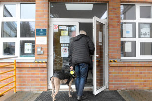Návšteva nemocnice. Pomoc veterinárov v nemocnici vyhľadávajú denne kvôli svojim miláčikom desiatky majiteľov zvierat.