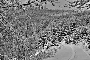 Cestou na Chotárny kopec.