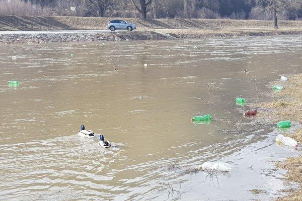 Odpad v Hornáde. Po rieke sa plavia plastové fľaše.