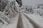 Presne pred rokom, 18. apríla, to v Oravskej Lesnej vyzeralo takto.