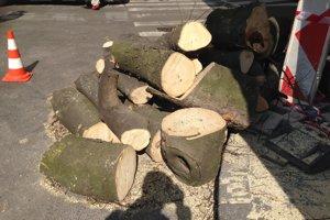 Vyrúbané stromy, ktoré mali podľa oznamu iba orezať.