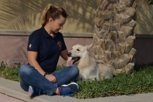 Katarína sa venuje komunikácii acvičeniu psov už dlho. Skúsenosti zbierala aj vexotických krajinách.