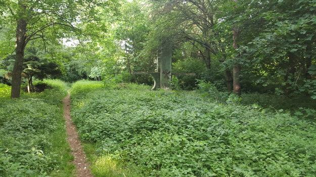 Vo vysokej tráve sa rozmnožujú hady, buriny dráždia alergikov. Cirkev rok čo rok nie je schopná postarať sa o svoje pozemky. Po novom za to bude môcť vyfasovať pokutu do výšky 33-tisíc eur.