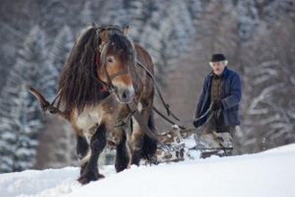 Jedna zo súťažných fotografií: Naši ľudia - Strýko Ondrej s koňom Mišom